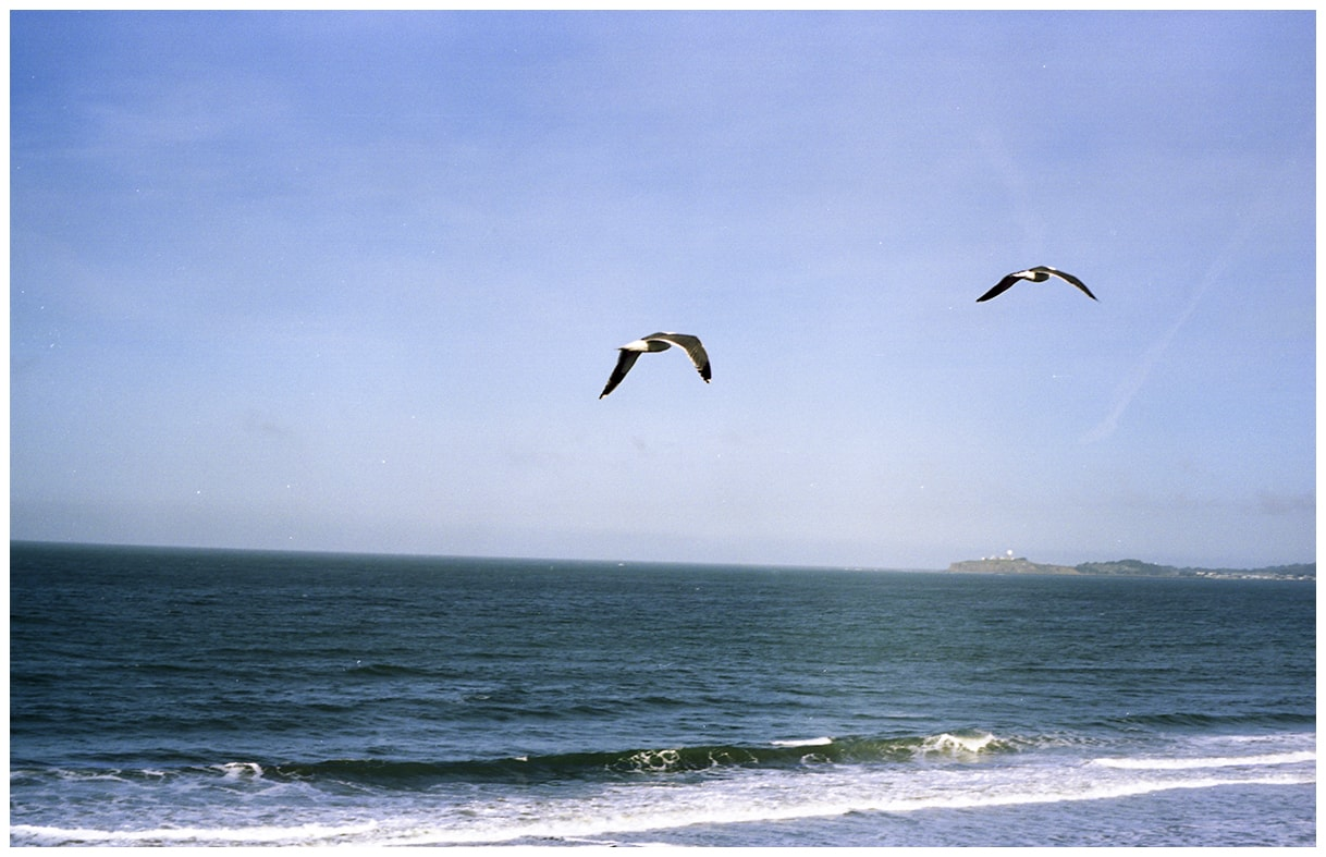 Film photos at Half Moon Bay, California