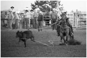 Bennett County Fair and Rodeo, Martin, South Dakota