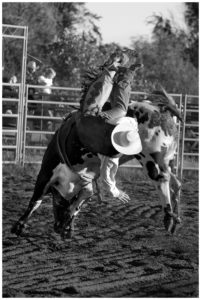 Foothills Bull Bash, Wessington Springs, South Dakota